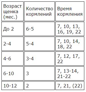 Таблица кормления щенков